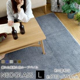 【オーダーカットOK】スミノエ ネオグラス 長方形 約200×250cm 約3畳相当 カーペット 絨毯 ホットカーペット 床暖房 オールシーズン 防ダニ アレルブロック 防炎 日本製 BIG SIZE RUG