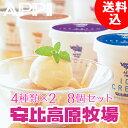 安比高原 アイスクリーム コーヒー プラスチック スプーン