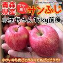 青森産 りんご 17kg 訳あり サンフジ 小玉ちゃん 17kg箱入(内容量17kg前後)ダンボール箱でのお届けです リンゴ 販売 青森県産