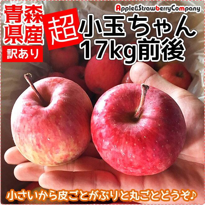 【品種おまかせ】青森りんご 【超小玉】青森産 りんご 17kg 訳あり 超小玉ちゃん 17kg箱入(内容量17kg前後)ダンボール箱でのお届けです リンゴ 販売 青森県産