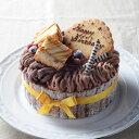 Caramelとアイスショコラ【5号】(直径15cm)|お誕生日 バースデイ 記念日 アイスケーキ ケーキ アイスクリーム アイス…