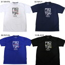 2017SS NEW インザペイント/IN THE PAINT 3ELEMENTS T-SHIRTS 半袖Tシャツ ITP17003 バスケットボール(itp1...