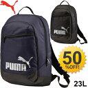 Puma073304_01