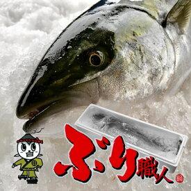 【鹿児島産ぶり・冷蔵】1尾(4〜5kg)■ ぶりラウンド・ブリ刺身
