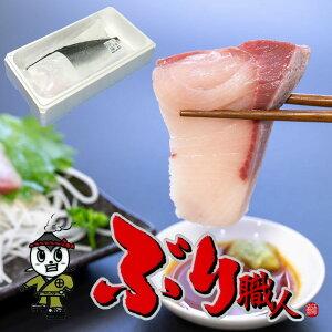 【鹿児島産ぶり・冷凍】半身(約1.7kg)■ ぶりフィレ・ブリ刺身