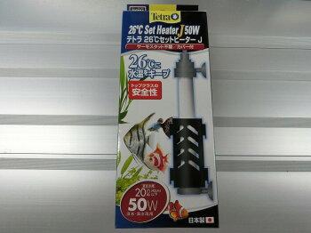 【tetra】熱帯魚飼育用品テトラデジタル水温計ブラックBD-1