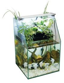 アクアFセール品!【コトブキ】レグラスポニックス300Hセット(30×30×45H)水槽とテラリウム一体式ポンプ、シャワーパイプセット
