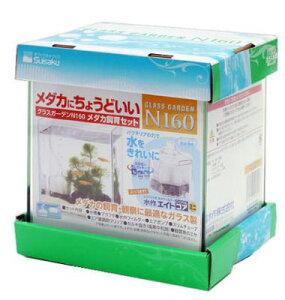 アクアF数量限定大特価!【水作】グラスガーデンN160 メダカ飼育セット (15.8×13×17Hセンチ)簡単メダカセット!