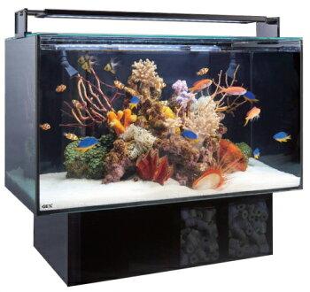 【GEX】水槽+フィルターセットグラステリアサイレントスリム900(90×22×30H)54リットル+サイレントフローデュアルブラック大特価!