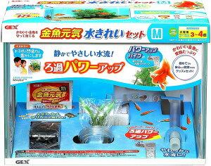GEX 金魚元気 水きれいセットM水槽セット