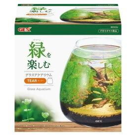 GEX グラスアクアリウム ティアー水草インテリア ガラス製