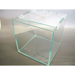 スクエア キューブ ガラス水槽 30cm (約24リッター)【アクアリウム テラリウム 苔リウム】