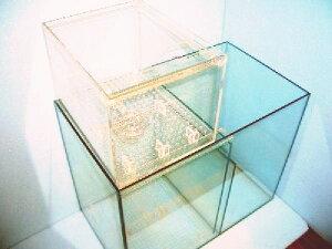 オーバーフロー 濾過槽 本体ガラス+アクリル製ボックス 50×29×58cm 特価!