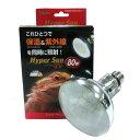 ☆保温 紫外線 爬虫類 トカゲ / ビバリア Hyper Sun UV(ハイパーサンUV)80W
