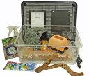 爬虫類 飼育 ケージ 爬虫類ケージ セット/ セット温ヒョウモントカゲモドキ初めて飼育8点セット