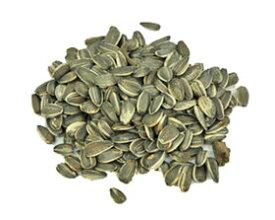 小鳥の餌 オリジナル ひまわりの種(大粒)5kg