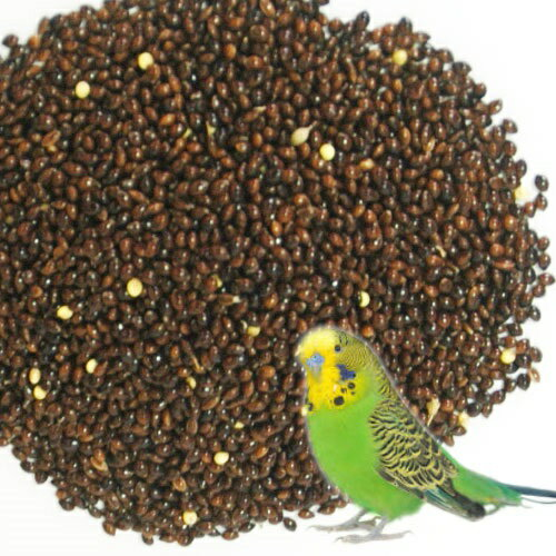 インコ 餌 小鳥の餌国産 無農薬 玄茶きび 200g