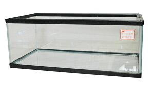フラット60cmガラス水槽 らんちゅう(サイズ:幅60x奥行29.5x高さ23cm)