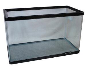 60cm水槽 熱帯魚 金魚 / コトブキ プログレ600水槽 ※別途送料加算