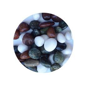 【楽天ランキング1位獲得】アクアシステム 金魚王子 本五色石 4kg 金魚 水槽 レイアウト 飾り石 用品