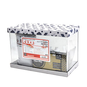 アクアシステム 金魚王子 ASPセット ニューアール600 水槽セット 60cm 60L 金魚飼育 金魚水槽 初心者も安心!