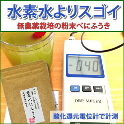 有機栽培のべにふうきの粉末茶40g入×3袋セット