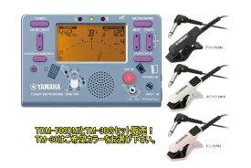 YAMAHA TDM-700DMI とTM-30 のセット販売
