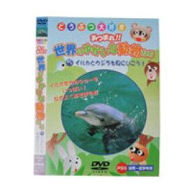 【メール便OK】【即納】どうぶつ大好き あつまれ!!世界のゆかいな動物たち 5イルカとクジラを見にいこう! /DVD