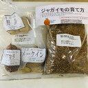 じゃがいも栽培セット タネイモ3種各2コ入り+肥料+栽培説明書付き