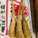 【タネイモ 短形自然薯 】10本入 収穫時の長さ40〜50センチ 短めで収穫がしやすい 北海道・東北・沖縄は追加送料