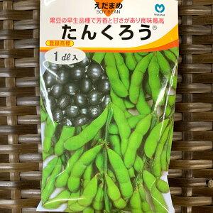 たんくろう 黒枝豆 種 約150粒 1デシリットル メーカー丸種 播種後80〜85日後収穫