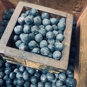 黒大豆の種 丹波黒大粒大豆 2デシリットル 約160粒 栽培用の黒豆種子 早どりして黒枝豆にも可