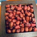 丹波大納言小豆のタネ 100ミリリットル入り(約300粒)