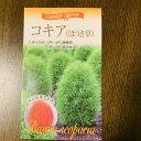 コキアのタネ【ほうき草】小袋詰  約50粒以上  秋に紅葉