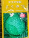 食味を追求したキャベツのタネ 品種名:とくみつ 約280粒(1.5ミリリットル入)冬場に高糖度 7〜8月まき