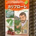 スティック カリフラワーのタネ 50粒入 品種名:カリフローレ 蕾の下の軸も食べられるカリフラワー さっとゆでてサラダ・炒め物に…