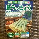 島らっきょう 球根 種 苗 栽培 100g 小袋詰 8〜9月植え 5〜6月収穫 植え付け目安:およそ幅650mmプランター1個分 沖縄県産 苗…