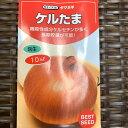 ケルたま 玉葱 種 約900粒(育苗本数約500〜600本分)10ミリリットル 小袋詰 吊って長期保管するならこれ! ケルセ…