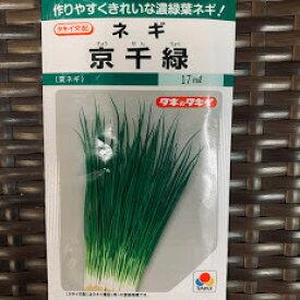 京千緑葱 種 17ミリリットル 小袋 葉は濃緑、葉枯れ、葉折れ少なく生育旺盛で作りやすい タキイ交配