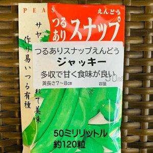 スナップエンドウ 種 ジャッキー 50ミリリットル 約120粒 つるあり品種 11月〜種まき サヤごと食べられる