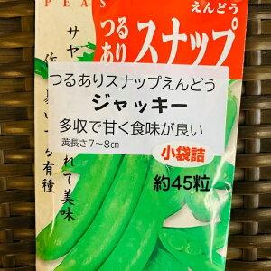 スナップエンドウ 種 ジャッキー 20ミリリットル小袋 約45粒 つるあり品種 11月〜種まき サヤごと食べられる