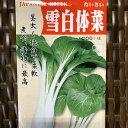 雪白体菜 種 小袋 たいさい しゃくしな 中国野菜