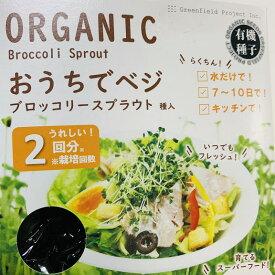 スプラウト野菜栽培キット ブロッコリー スプラウト種子2回分タネ付き 容器カラー ベージュとブラック  日時指定不可 スーパーフード