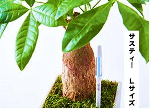 サスティー Lサイズ 1本 シングルパック カラ- グリーン・ホワイト 植物の水分チェッカー 水分計 6〜12号鉢 直径 18〜36センチくらいの鉢用 個別包装タイプ 運ぶのに力が要るくらいの鉢用 観