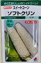 白トウモロコシ 種 品種名 ソフトクリン 50粒入 タキイ種苗の品種 スイートコーン 一代交配種