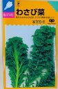 わさび菜 種 小袋詰 ほぼ年中栽培可能で育てやすい