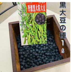 黒大豆の種 丹波黒大粒大豆 1リットル 袋入り 約750粒 お徳用 栽培用の黒豆種子です。