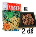 落花生 種 半立性種 2デシリットル 約110粒 露地直まきは5月初旬から 千葉県産 ピーナッツの種