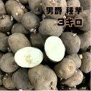じゃがいも 男爵 種芋 3キロ 芋数約20〜30コ M、Lサイズ寸(半分に切り分けられるサイズ)北海道産種馬鈴薯 種馬鈴薯検…