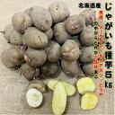 1月30日まで121円OFF じゃがいも 種芋 5kg 約40〜50コ 男爵・メークイン・キタアカリ・とうやの中から1品種のみ選ん…
